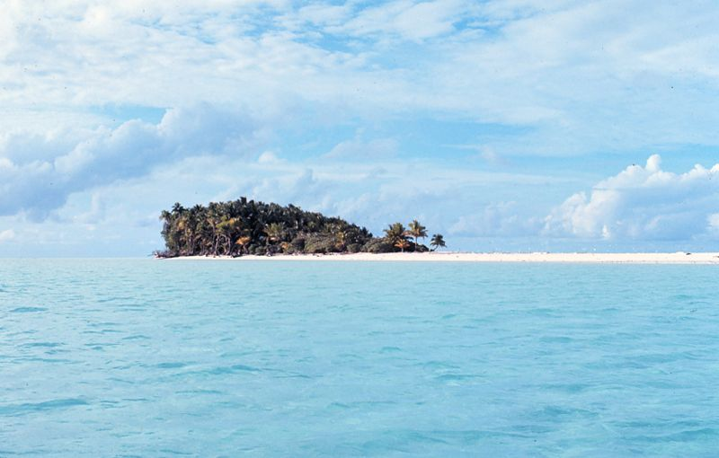 desert island in West Papua  - If you could take three things with you to a desert island, what would they be?