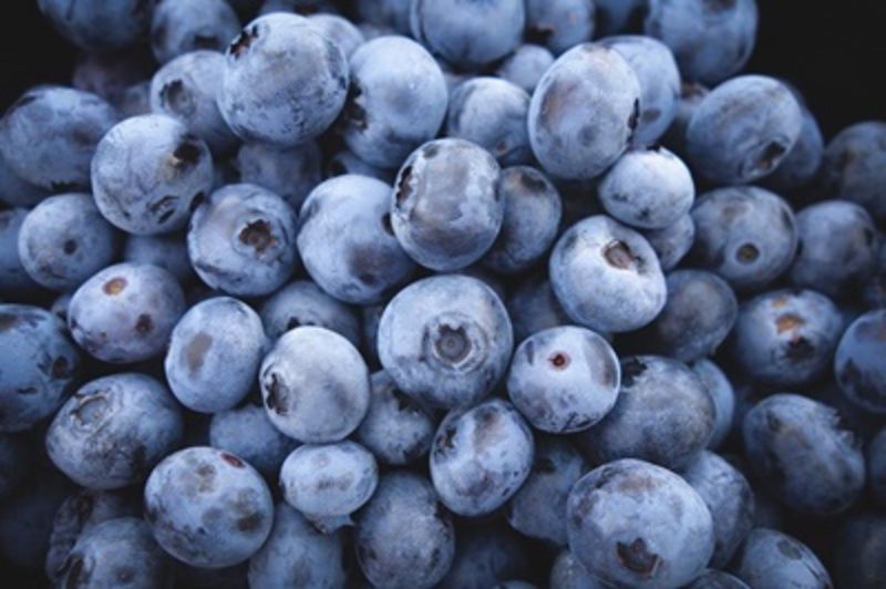 do,you,eat,blueberries,or,mulberries  - Do you eat blueberries or mulberries?