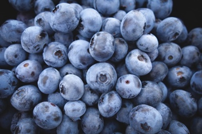 do,you,eat,blueberries,or,mulberries