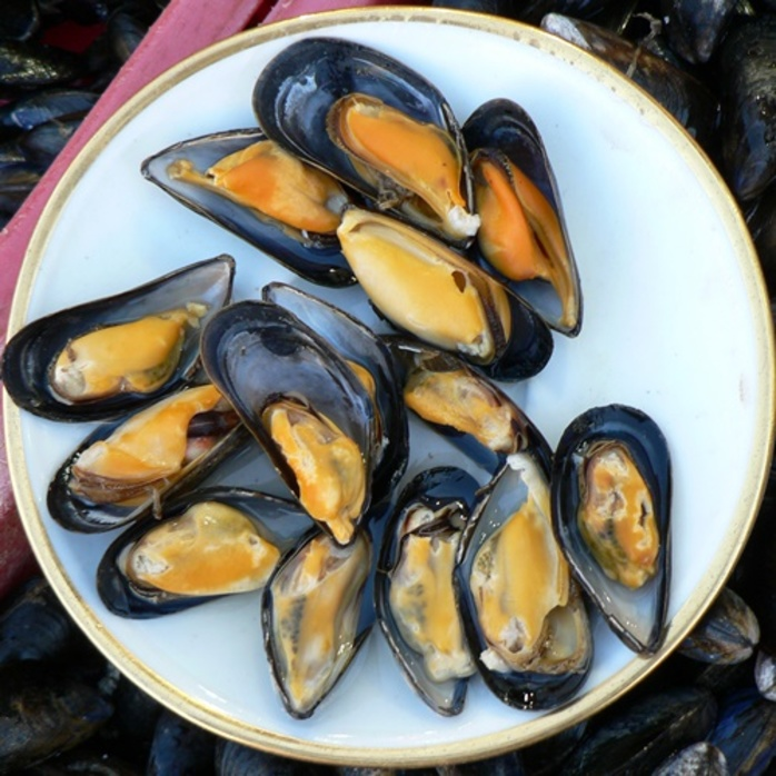 do,you,like,and,eat,mussels