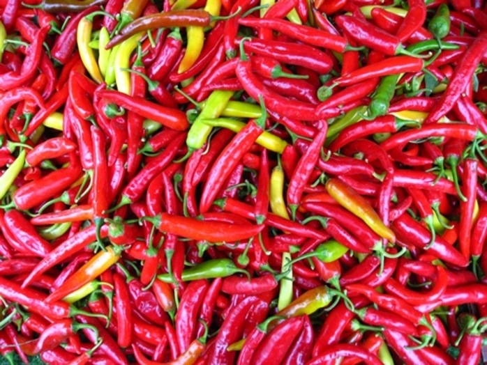 do,you,often,use,chilis,in,cooking