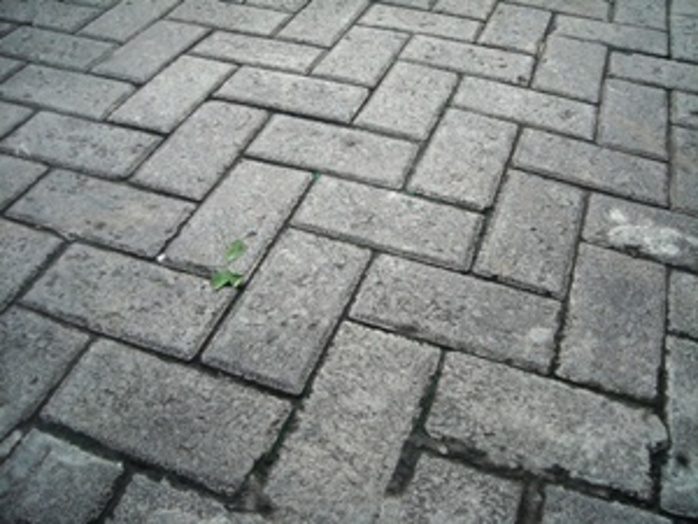 do,you,regularly,clean,your,brick,paving