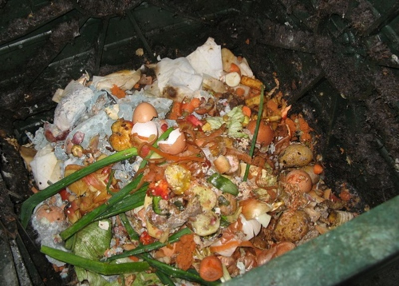 do,you,turn,kitchen,scraps,into,compost