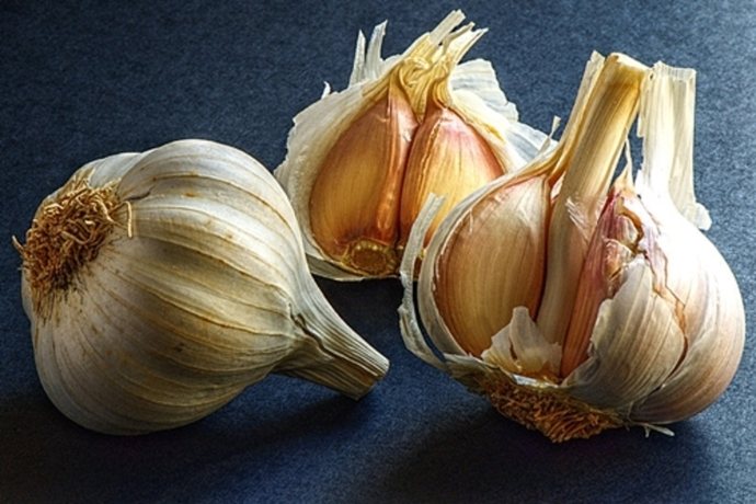 garlic,in,cooking