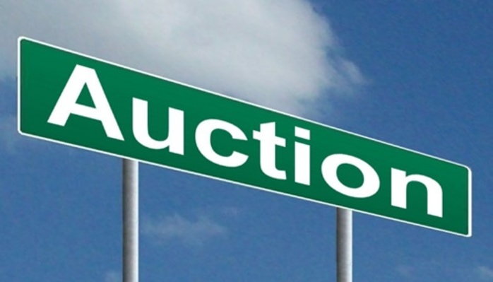have,you,ever,been,to,an,auction