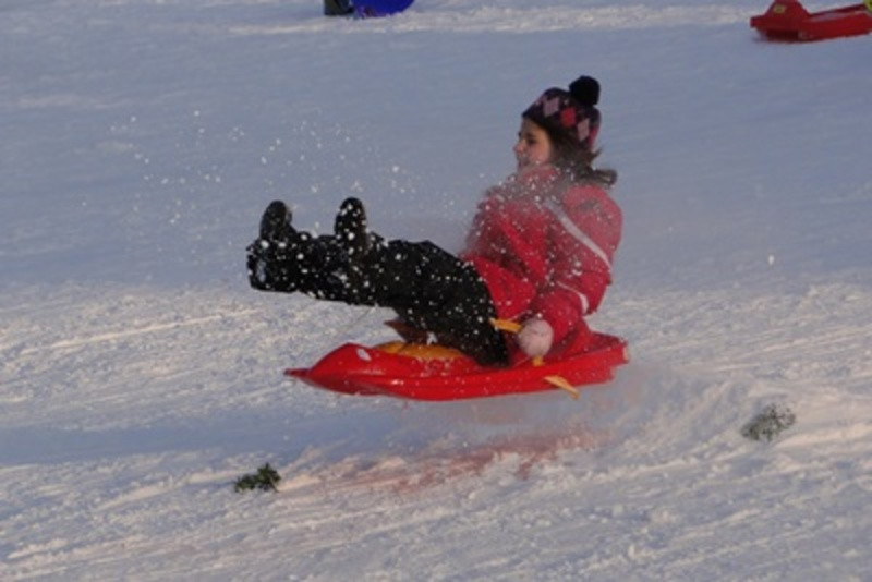 have,you,ever,been,tobogganing,in,the,snow