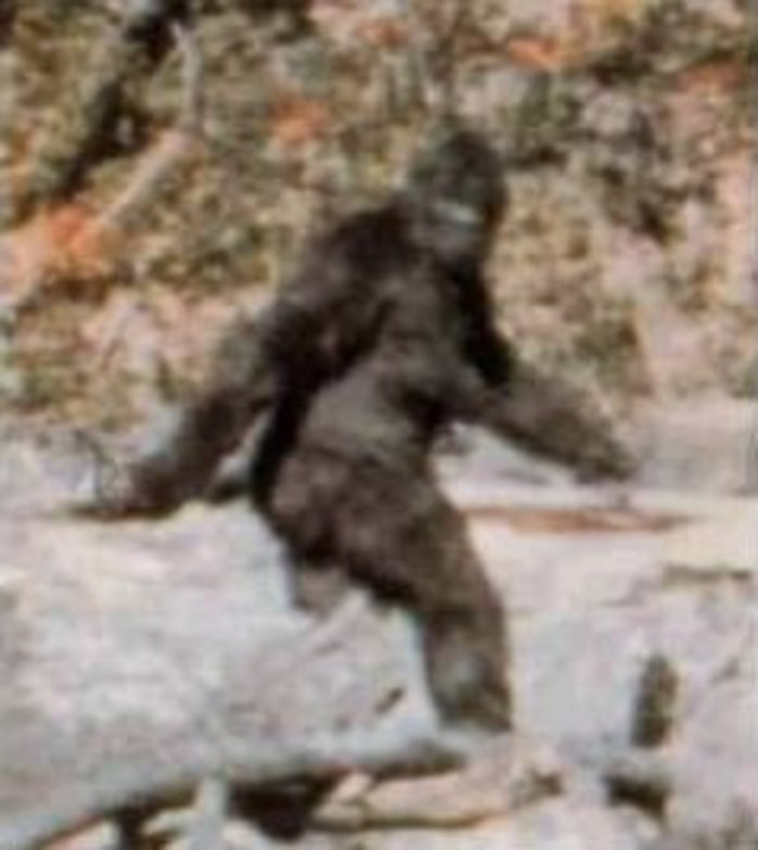 Patterson-Gimlin film, bigfoot, bigfoot hoax