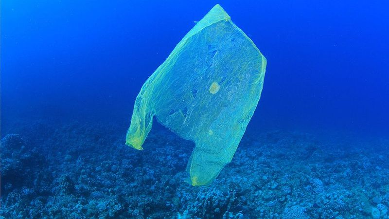 Plastic bag in ocean  - What have you done for plastic-free July?