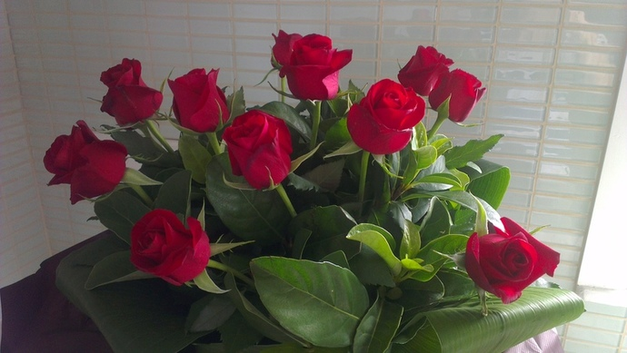 roses, valentines day, valentines day flowers