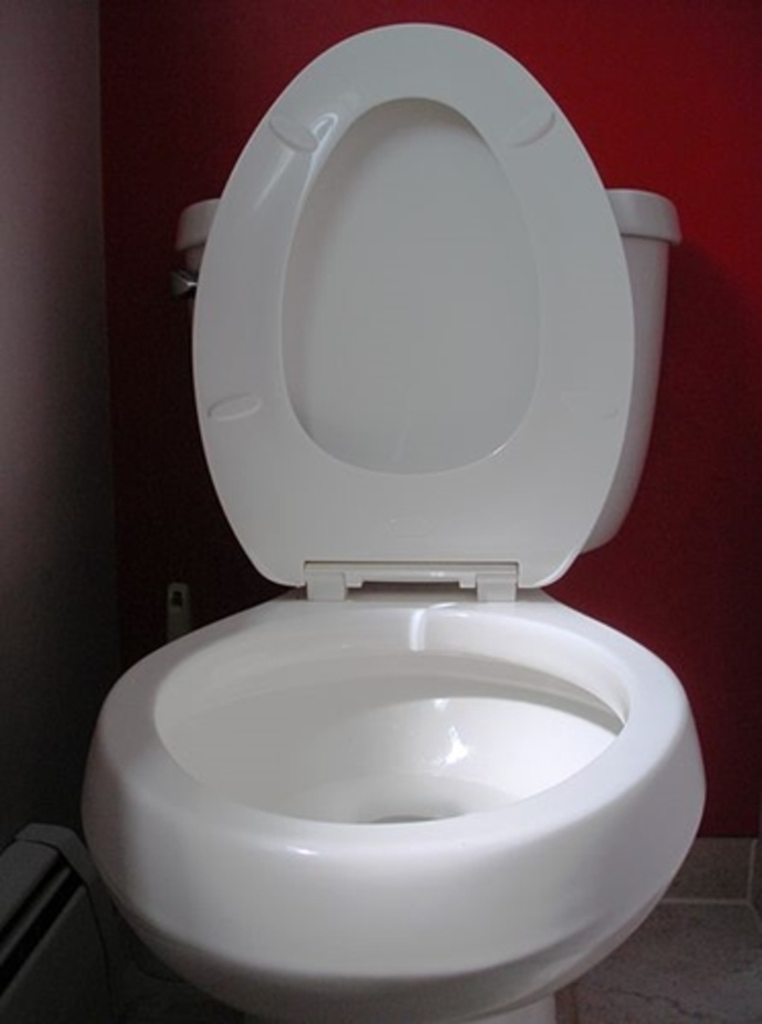 toilet,seat,up,or,down