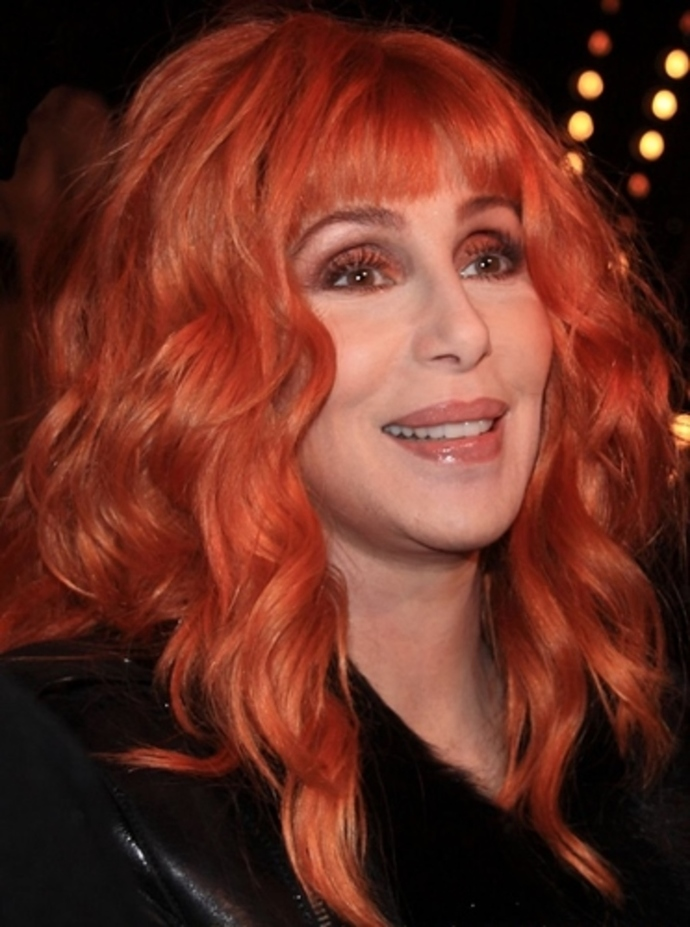what,do,you,think,of,the,work,cher,has,had,done,to,her,body,face