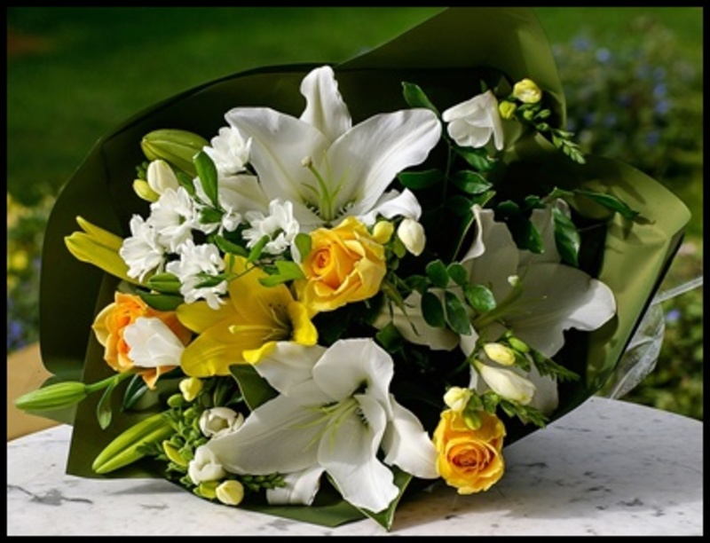 when,did,you,last,receive,flowers,as,a,gift  - When did you last receive flowers as a gift?