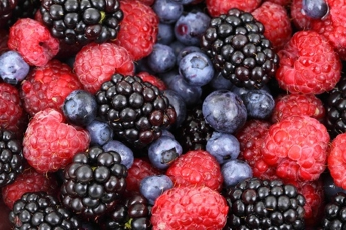 which,is,your,favourite,berry