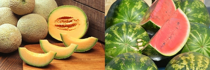 would,you,prefer,rockmelon,or,watermelon