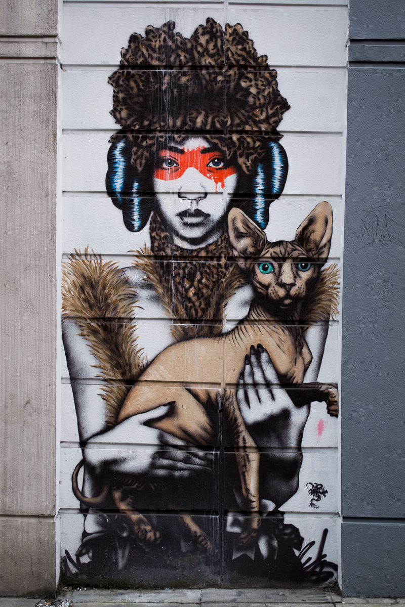 african woman cat warrior graffiti  - Which animal do you think would embody your inner self?