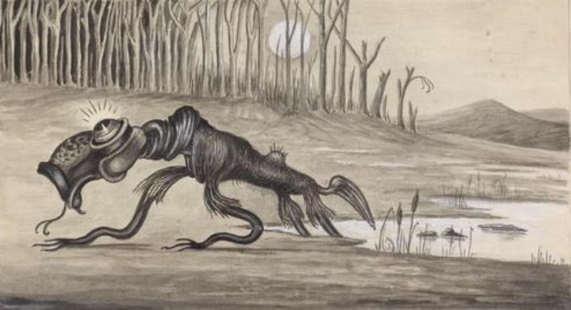 Bunyip  - Have you ever gone looking for a bunyip?