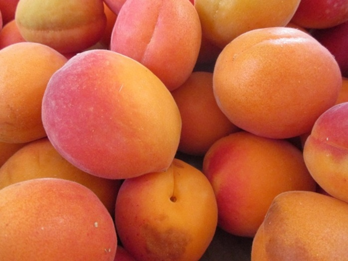do,you,like,fresh,apricots