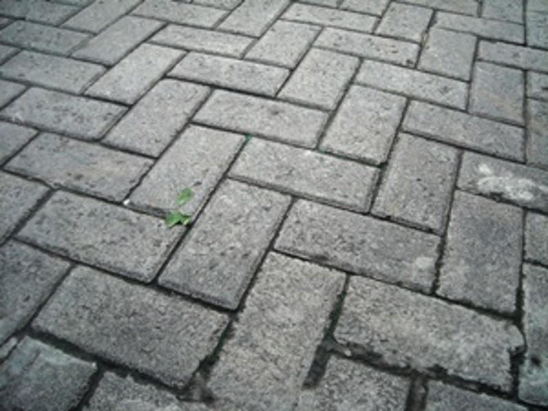 do,you,regularly,clean,your,brick,paving  - Do you regularly clean your brick paving, or pathways?