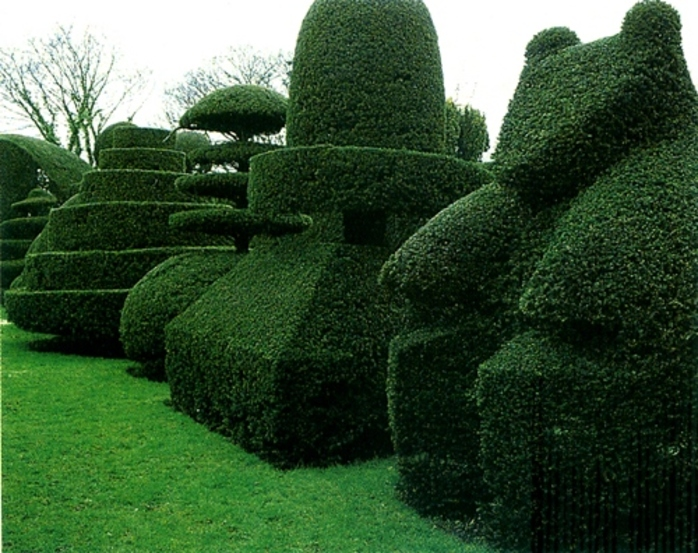 would,you,like,these,in,your,garden